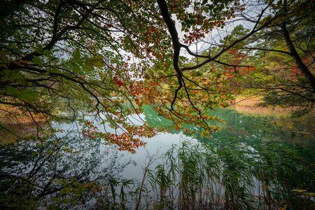 Blue  green pond in the red forest, Goshiki-numa pond, Autumn Fukushima, Japan
