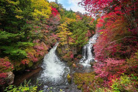 Colourful forest with Ryuzu waterfall in autumn season, nikko, autumn, japan