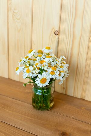 Bouquet of daisy-chamomile flowers in concrete pot in the morning Zdjęcie Seryjne