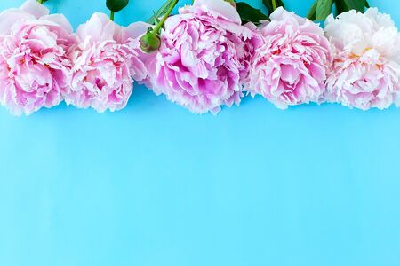 Bouquet of Bush roses on a blue background. Space for copying. Space for text