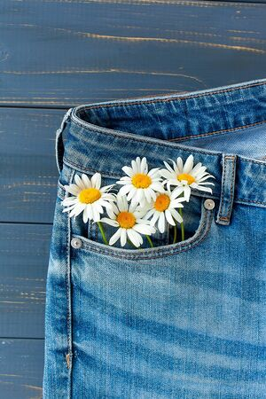 camomiles in your jeans pocket