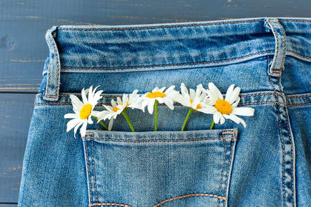 Summer flowers in the pocket of my jeans against a blue background. Zdjęcie Seryjne