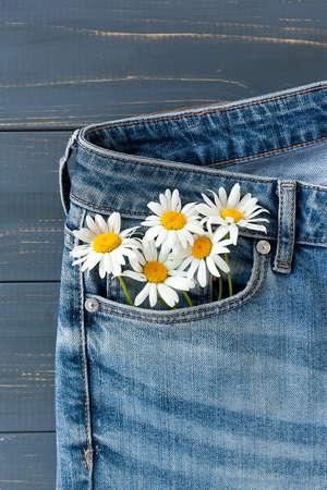 camomile in jeans pocket. studio macro shot