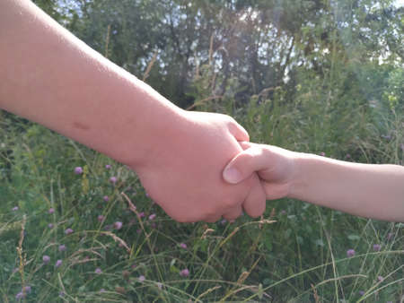 Close up people hands shake business partnership success,Shake hand concept Zdjęcie Seryjne