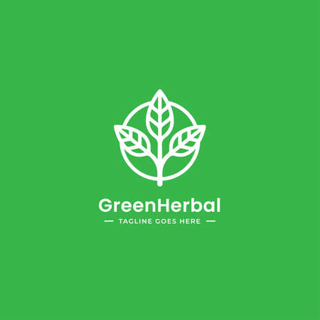 Triple leaf Natural organic logo design in outline vector style suitable for herbal and medical