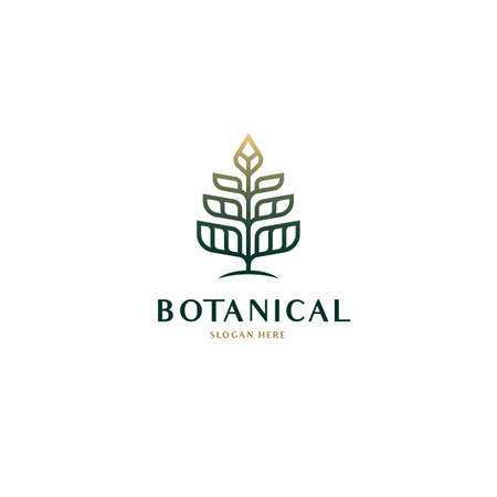 Geometric Botanical nature tree logo outline drawing vector with luxury gradient color