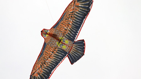 Close-up image of flying a kite. 写真素材
