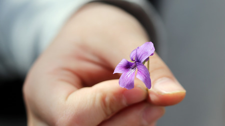 The childs hand holding the purple flower.