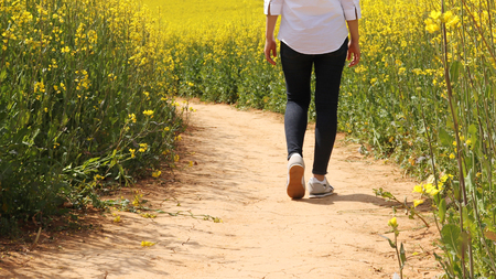 A woman is walking on the path to the rape flower garden.