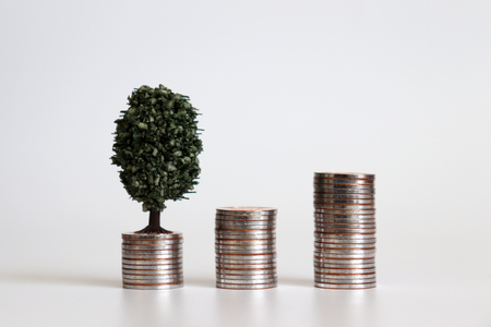Three piles of coins and a miniature tree. Stock Photo
