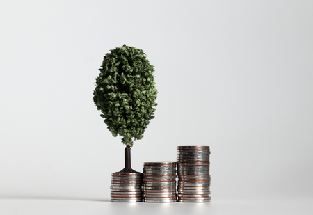 Three piles of coins and a miniature tree. 写真素材