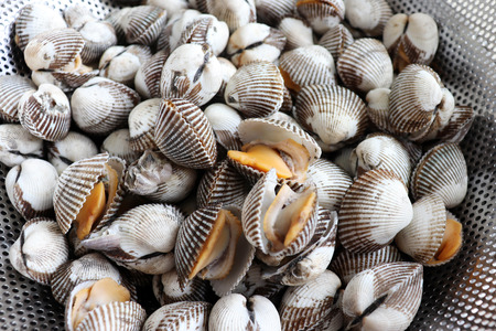 Close-up images of cooked shellfish.