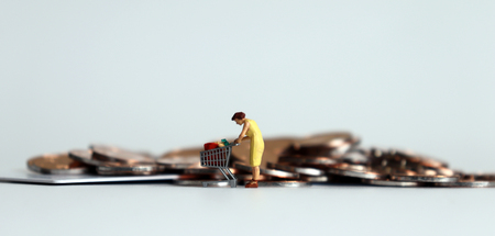 A miniature woman shopping in front of coins.