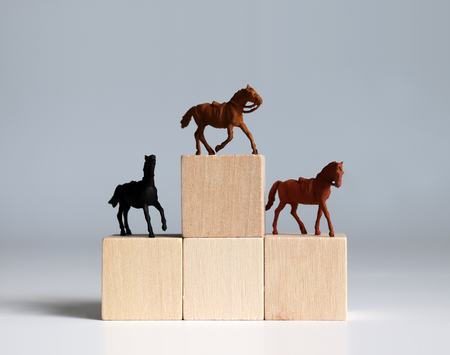 Three miniature racehorses standing on a block of trees shaped like a podium.