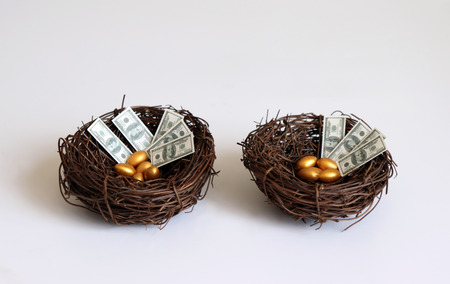 Golden eggs and dollars in two nest.