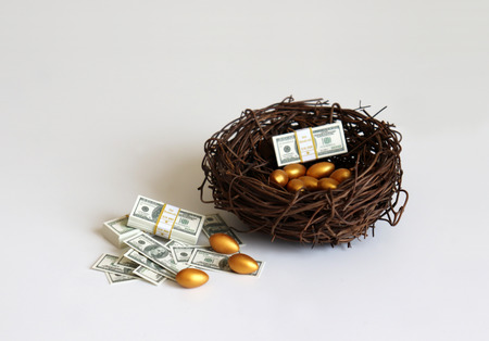 Dollars and golden eggs with straw nest.
