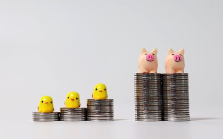 Three miniature yellow chicks on the stair-shaped coin piles and Two miniature pink pigs on the tower-shaped coin piles.