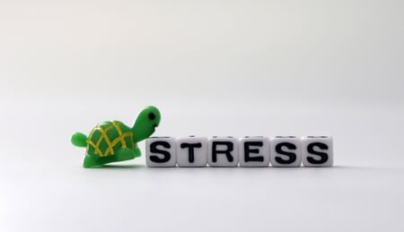 The word STRESS on white cubes with Miniature Turtle. Zdjęcie Seryjne