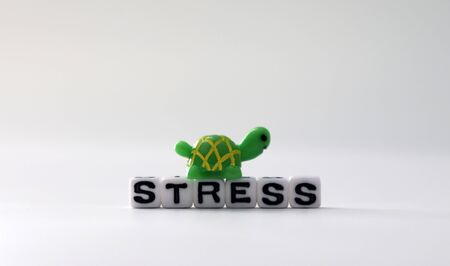 The word STRESS on white cubes with Miniature Turtle. Stock fotó