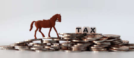 coins, miniature horse and tax.