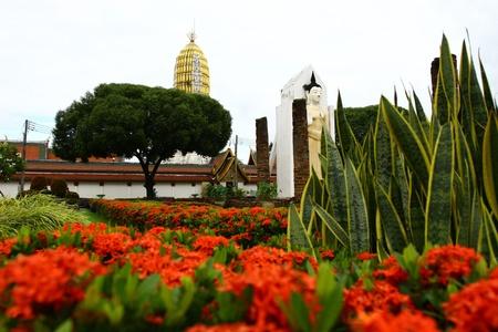 flower in wat,thailand photo