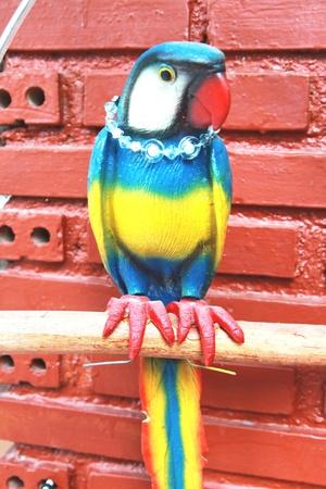 aviary: bird macaw statue