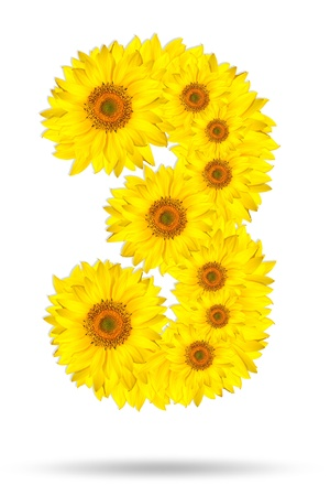 Number three made of sunflower  photo