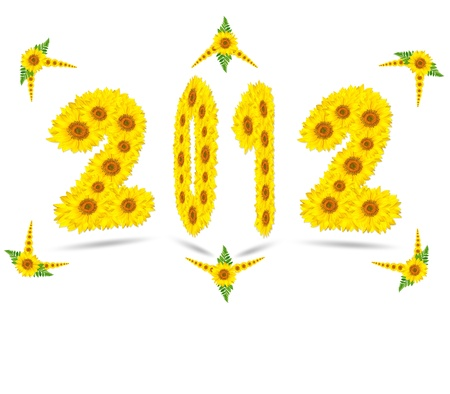 new year 2012, sun flower on white background  photo