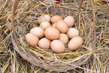 Eggs in a basket are placed on the straw.