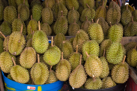 Durian,the fruit in Thailand. tropical fruit delicious, sweet and good smell. Stock Photo