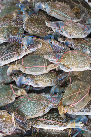 Seafood market, sea crab