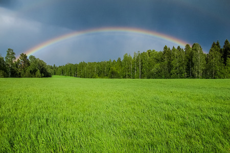 A background depicting a beautiful rainbow over a green grassy field in summer. Lots of space for text. Stock Photo
