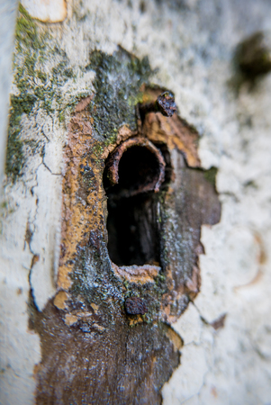 Rusty old keyhole without key on an old white door. The pint has started to flake. Stock Photo