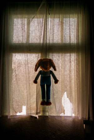 This teddy bear died by suicide from hanging in the window.