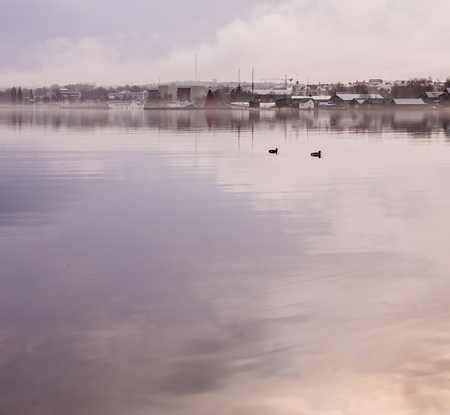 Mariehamn the town of Ã…land, a misty January day seen from the water with copy room for text. Two birds swimming.