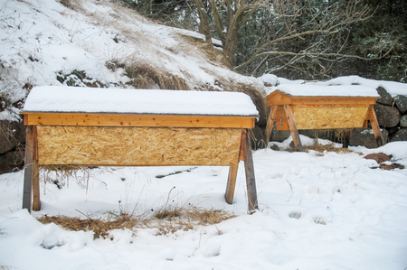 Two top bar hives covered in snow in winter.
