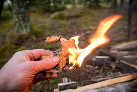 手で保持された森の中でバーチ樹皮のティンダーを燃やす。バーチ樹皮の油は、それがたくさん燃やします。