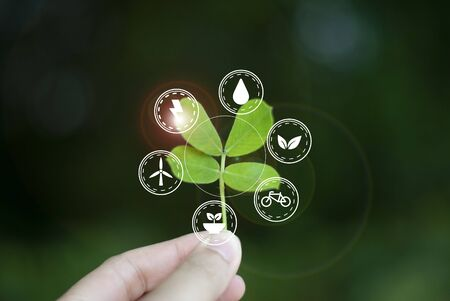 Concept of love, ecology world To sustainability