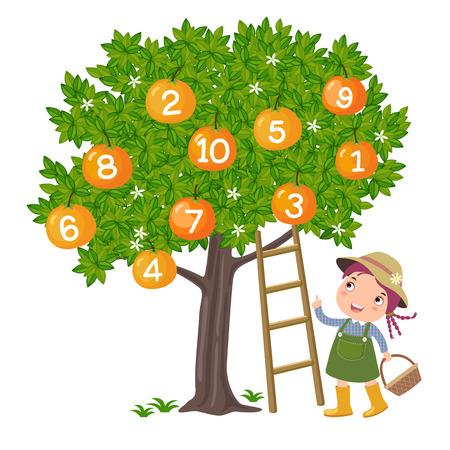 Fille cueillette d'orange et le nombre de comptage Banque d'images - 40625048
