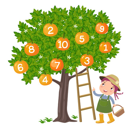children school: Girl picking orange and counting number