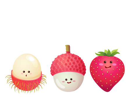 A vector illustration of a set of fruits characters  strawberry lychee litchi rambutan