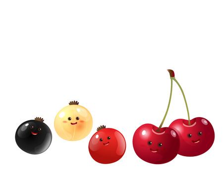 currant: A vector illustration of a set of fruits characters  cherry red currantwhite currant back currant