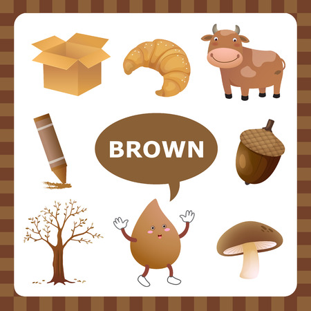 Learn The Color Brown things that are brown color
