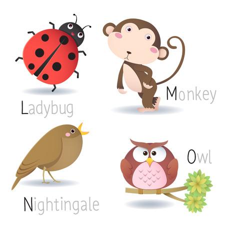 bird nightingale: Illustration of alphabet with animals from L to O Illustration