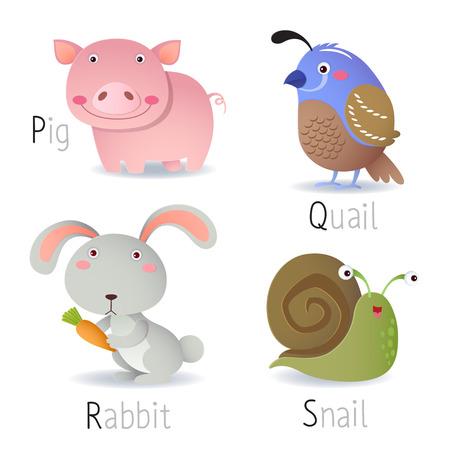 동물: P에서 S에 동물과 알파벳의 그림 일러스트