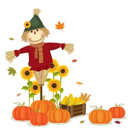 girasol: Ilustración de la cosecha de otoño con el espantapájaros lindo y calabazas