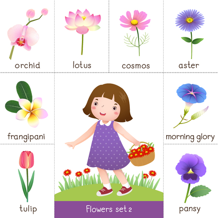 Illustration of printable flash card for flowers and little girl picking flower Illustration