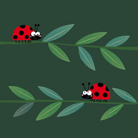 Vector illustration of two cute ladybirds or ladybugs walking on the grass stems.