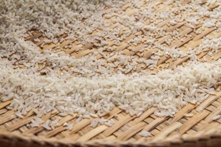 winnowing: winnowing basket with rice