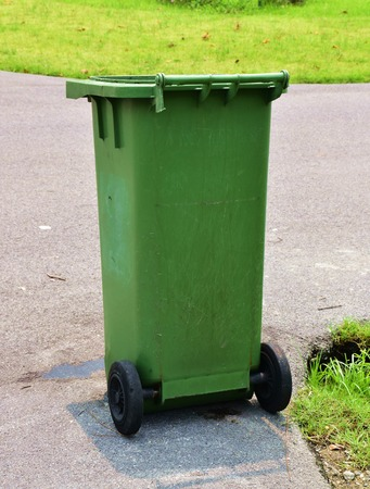 organics: Large Green Wheelie Bin for General Waste and Garden Organics with nature light